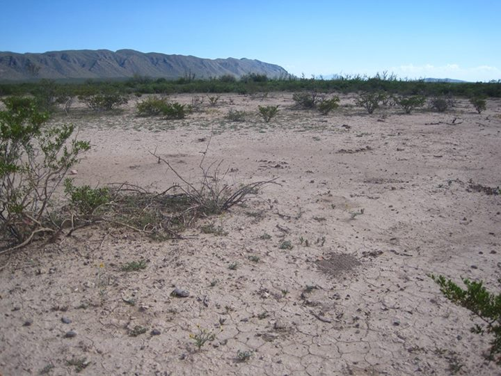 Mexico - parched land - photo by Alejandro Carrillo