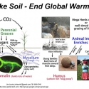 Graphic: Make Soil - End Global Warming
